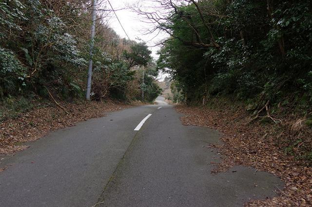 三原山ドライブウェイ
