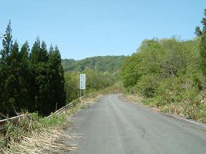 道路レポート