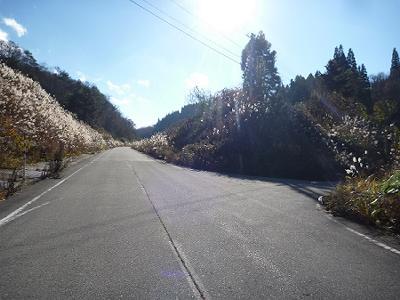 道路レポート 福島県道53号会津...